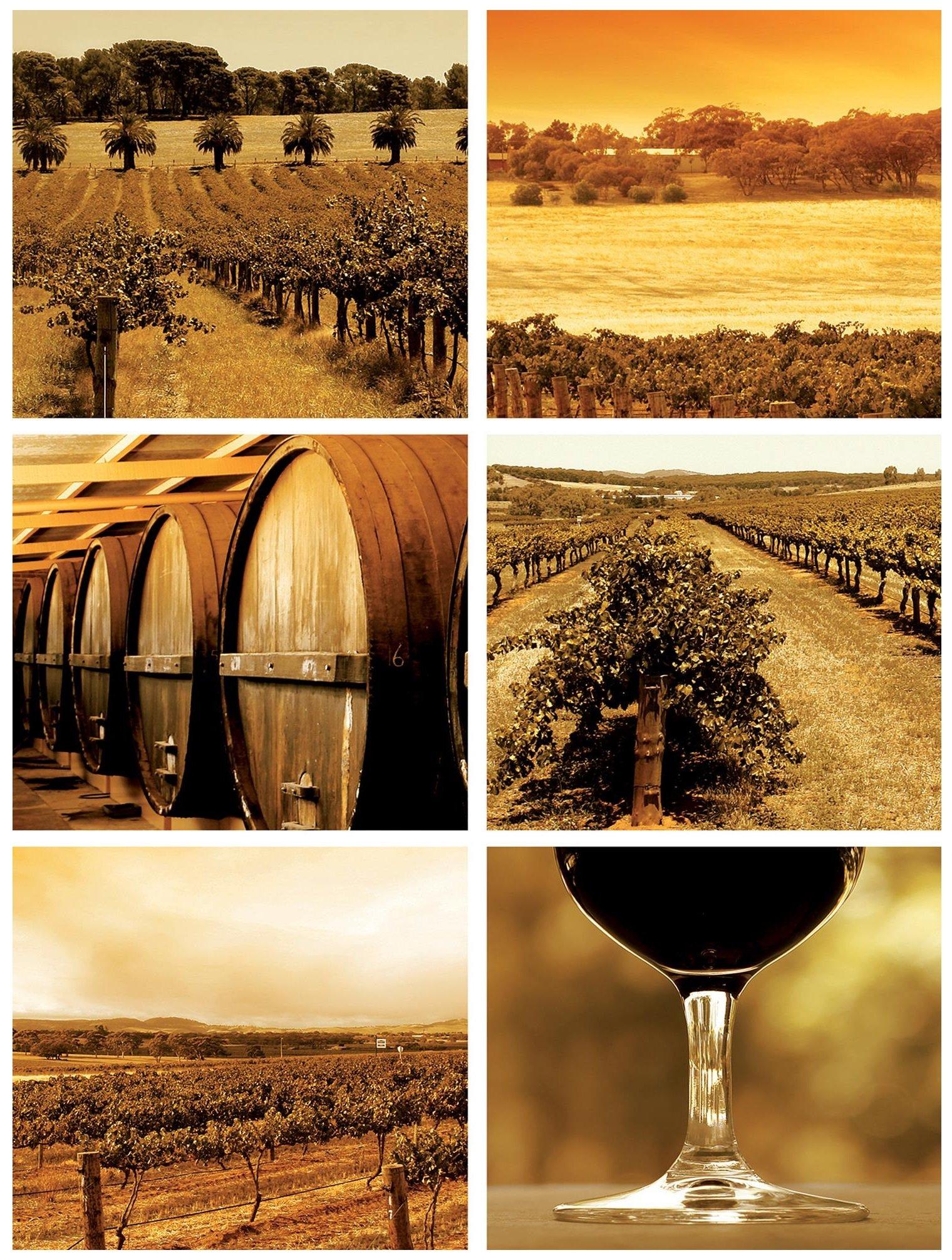 Fototapeta do kuchni winogrono fototapety